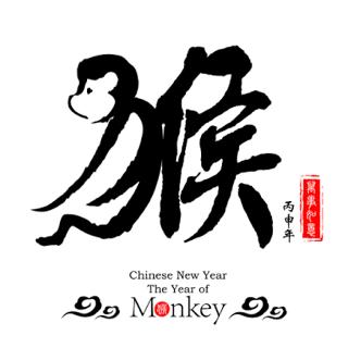 Monkey IMG_3456